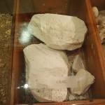 タルラン 土壌サンプル