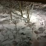 訪問時は雪でした